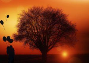 tree-1894217_1920